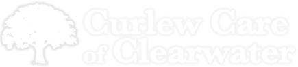 Curlew Care of Clearwater